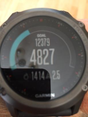 Garmin Fenix3 navigation tracking fitness